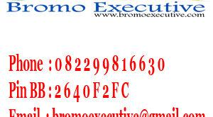 Bromo Executive